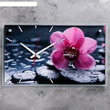 Часы настенные, серия: цветы, красная орхидея на камнях, 36х60  см, микс