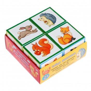 Умные кубики «забавные зверята», 4 штуки, в поддончике