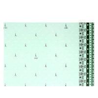 Бумага для творчества башня в кружевах нежно-зелёная а4 плотность 80 гр