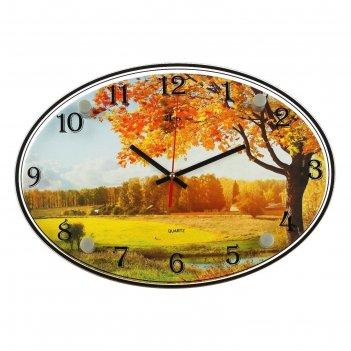 Часы настенные, серия: природа, осенний лес, 24х34  см, микс