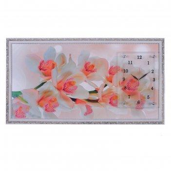 Часы-картина настенные, серия: цветы, ветка орхидеи, 50х100  см, микс