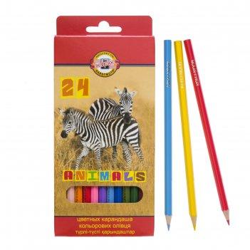 Карандаши 24 цвета животные, европодвес
