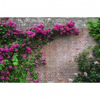 Фотобаннер, 250 x 200 см, с фотопечатью, «кирпичная стена»