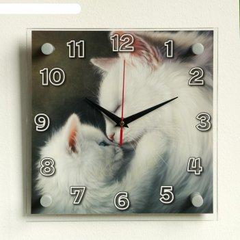 Часы настенные, серия: животный мир, кошки, 25х25 см