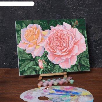 Картина по номерам на холсте с подрамником «розовые розы», 40х30 см