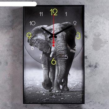 Часы настенные, серия: животные, джамбо, 37х61 см