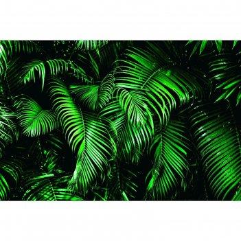 Фотобаннер 250 х 200 см, с фотопечатью зелёные листья