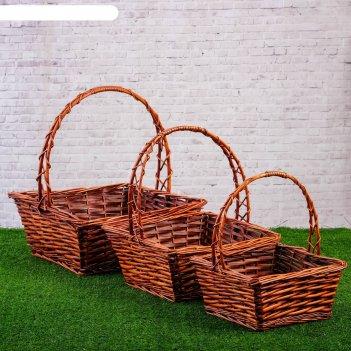 Набор корзин плетёных, ива, 3 шт., коричневые, прямоугольные, большие