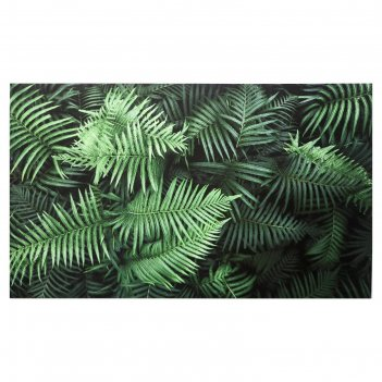 Картина на холсте листья папоротника 60х100 см