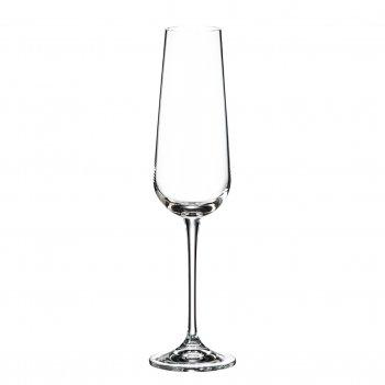 Набор фужеров для шампанского crystalite bohemia ardea/amundsen 220 мл(6 ш