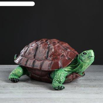 Копилка черепаха большая рисованная