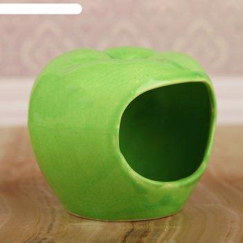 Кормушка для хомячков яблоко  цвет зеленый