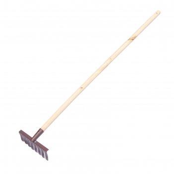 Грабли прямые, повёрнутый зубец, 8 зубцов, металл, деревянный черенок