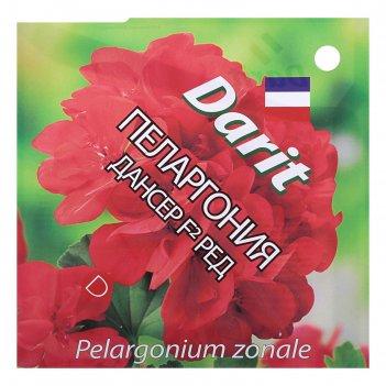 Семена цветов пеларгония дансер f2 ред, мн, 4 шт