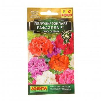 Семена цветов пеларгония рафаэлла f1, смесь окрасок, мн, 5 шт