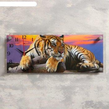Часы-картина настенные, серия: животный мир, тигр, 50х20 см  микс
