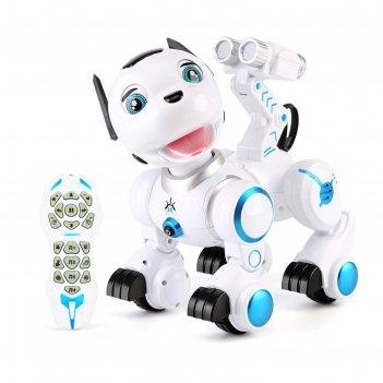 Робот интерактивный радиоуправляемый, программируемый дружок, световые и з
