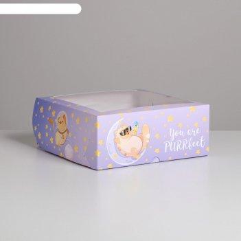Коробка для капкейков purrfect 25 х 25 х 10см