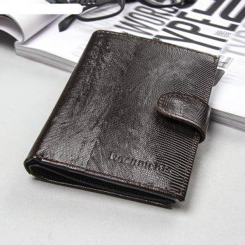 Обложка автодокументы + паспорт + бумажник, коричневая игуана