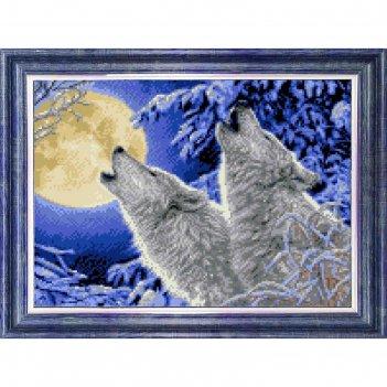 Канва с нанесенным рисунком для вышивки крестом лунная соната