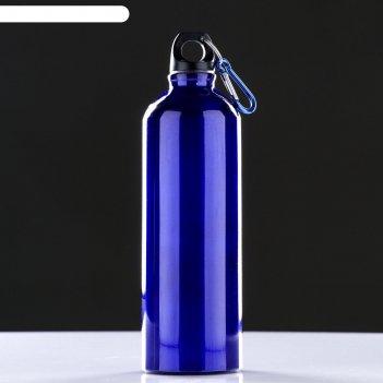 Фляжка туристическая 750 мл с карабином синяя 24,5х7х7 см