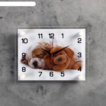 Часы настенные, серия: животный мир, щенок и мишка, 20х26 см микс