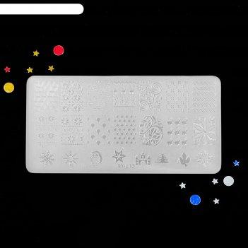 Диск для стемпинга пластиковый, 12 x 6 см