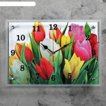 Часы настенные, серия: цветы, разноцветные тюльпаны, 25х35  см, микс
