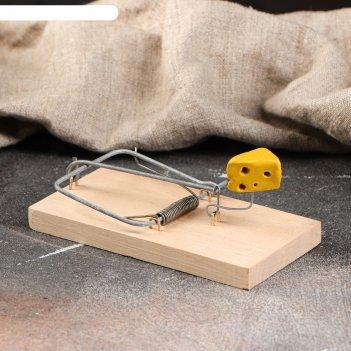Мышеловка деревянная ретро, 120 х 60 х 1 см
