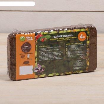 Кокосовые блоки 315 г в индивидуальной упаковке