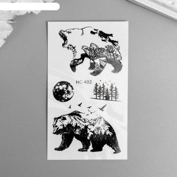 Татуировка на тело чёрная медведи и еловый лес 10,5х6 см