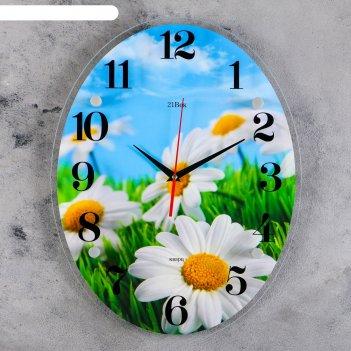 Часы настенные, серия: цветы, ромашки, 35х46 см микс