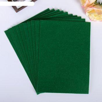 Фетр листовой астра зелёный, мягкий, 1 мм, 20х30 см, 10 листов