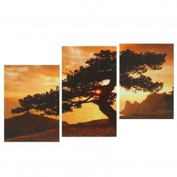 Модульная картина на подрамнике одинокое дерево в горах, 1 — 53x32, 2 — 45