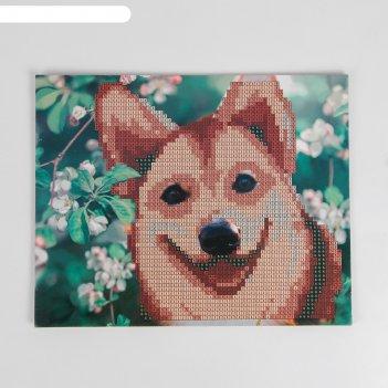 Алмазная мозаика для детей милый щенок 20*25 см