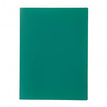 Папка с 10 прозрачными вкладышами a4 500 мкм, calligrata, песок, зелёная
