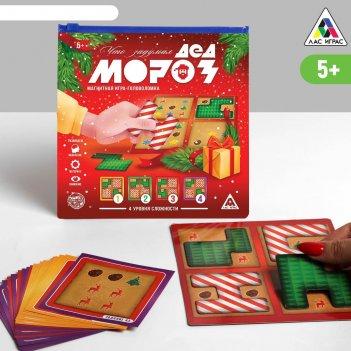 Магнитная игра - головоломка что задумал дед мороз