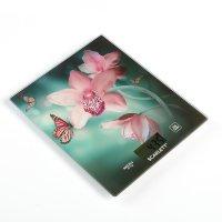 Весы кухонные scarlett sc-ks57p31, электронные, до 8 кг, орхидея