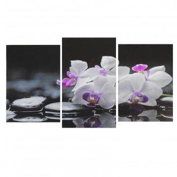 Модульная картина на подрамнике веточка орхидеи (2-31х44; 1-31х51) 93*51 с