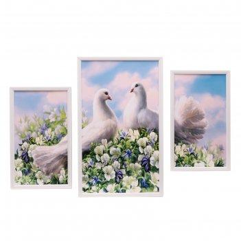 Модульная картина в раме голуби в цветах