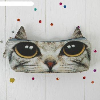 Мягкий пенал серый котик карие глазки