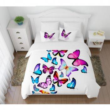 Кпб «яркие бабочки» евро, размер 220 x 240 см, 200 x 220 см, 50 x 70 см-2