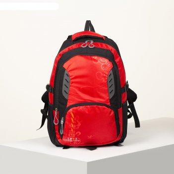 Рюкзак турист высь, 31*12*47, 2 отд на молнии, 2 бок кармана, дыш спинка,