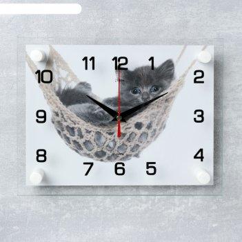 Часы настенные, серия: животный мир, котенок в гамаке, 20х26 см  микс
