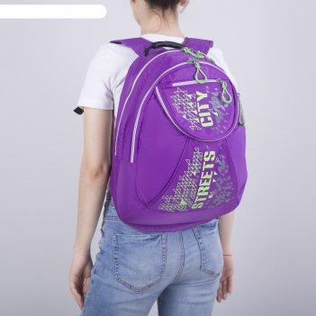 Рюкзак школьный, 2 отдела на молниях, наружный карман, цвет фиолетовый