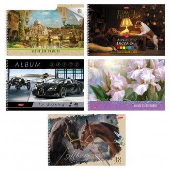 Альбом для рисования а4, 48 листов на гребне ассорти, мелованный картон, м