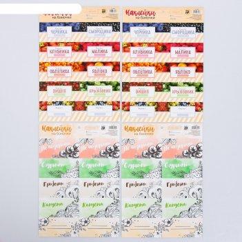 Набор наклеек «для варенья и соленья», 21 x 29.5 см