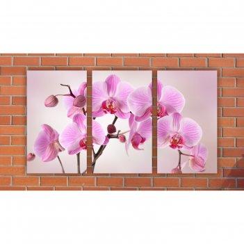 Модульная картина на экокоже розовые орхидеи. отражение 3шт.-30х50 см, 94*