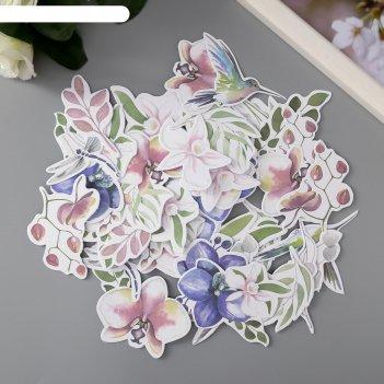 Набор высечек tender orchid 49 шт