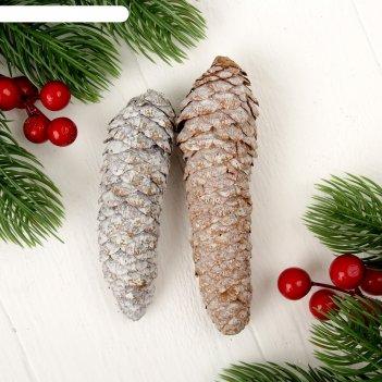 Набор новогодннего декора шишки, 2 шт.